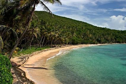 Bequia Beach