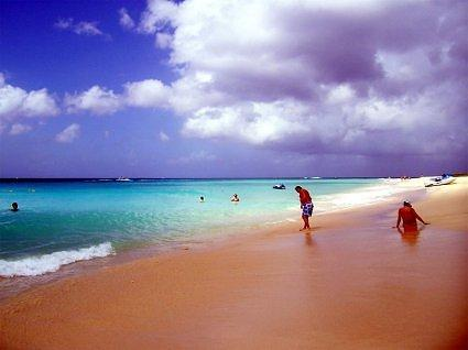 Barbados Malibu Rum Factory Beach