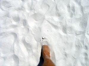 Siesta Key Quartz Sand Beach, Sarasota, Florida